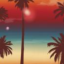 Miami 21989 Knapp